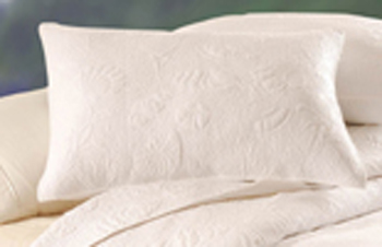 Blue Oasis White Shell Euro Sham