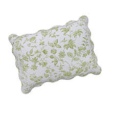 Brighton Green Toile Standard Pillow Sham